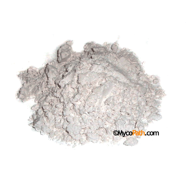 Gypsum - Calcium Sulfate Pharmaceutical Grade Food Grade - 1 lb