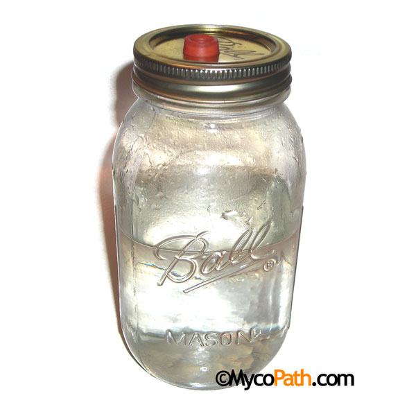 Liquid Culture Jar - Karo, 500ml
