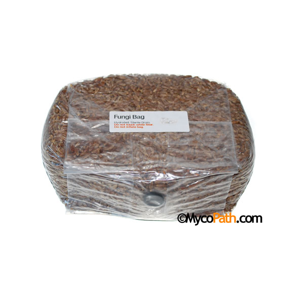 Sterilized Rye Fungi Bag, 2lb
